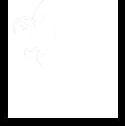 Federação Escotista de Portugal
